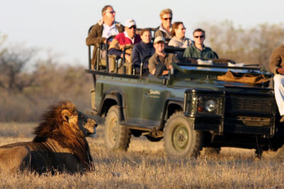 2023 South Africa Coastal Golf Cruise Wine Tasting Tour and Big 5 African Safari.